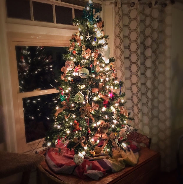 The Tradition Of Christmas Trees: Holiday Traditions